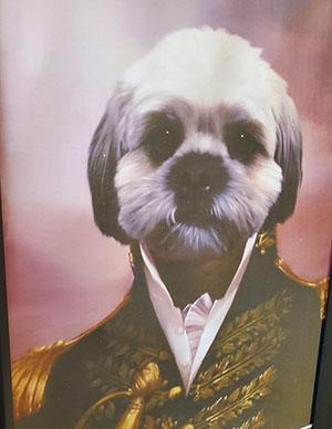 General Wilson - Chief Barking Officer